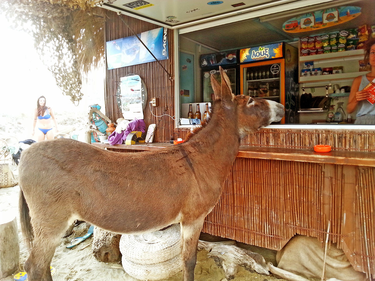 tinos-greek-island-beaches-tourism-snack-on-the-beach-big-kolympithra