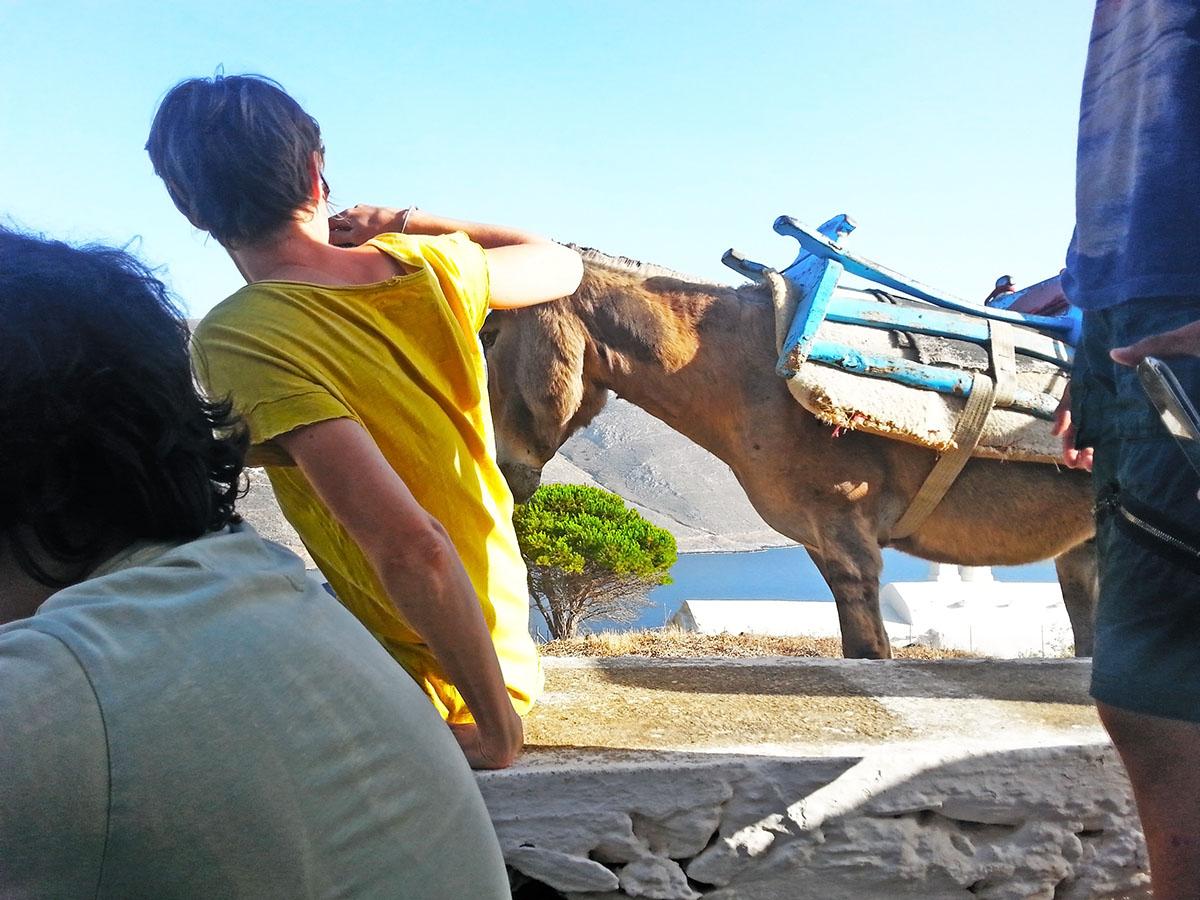 amorgos-cyclades-island-endless-blue-greece-summer-vacation-Panigiri-End of Festival Fest-monkey
